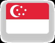 Flag sg